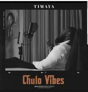 Download Audio | Timaya ft Alikiba - Number One