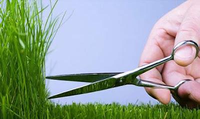 cara mencukur bulu kemaluan yang baik dan benar