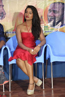 Katrina Karina Madhyalo Kamal Haasan movie Launch event March 2017 005.JPG