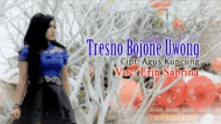 Lirik Lagu Tresno Bojone Uwong - Erin Sabrina