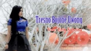 Lirik Lagu Tresno Bojone Uwong (Dan Artinya) - Erin Sabrina