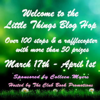 Little Things Blog Hop picture