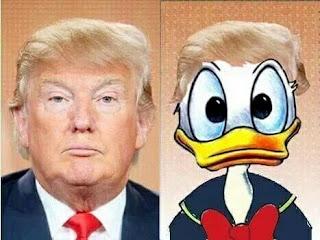 el hermano gemelo del pato donald