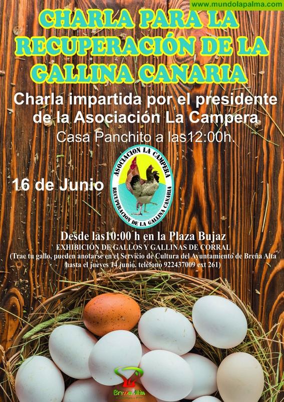 Charla para la recuperación de la Gallina Canaria