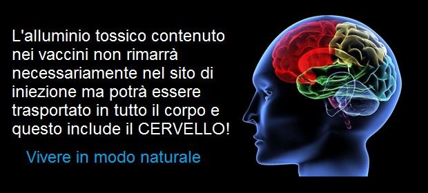 biopersistenza_traslocazione_adiuvanti_alluminio_al_cervello