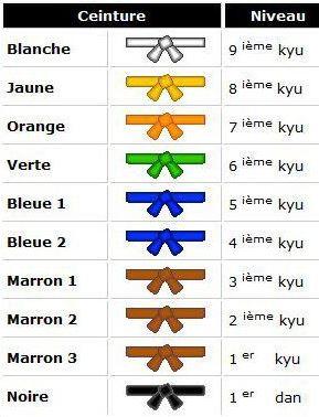 ... 1er marron 8 (3eme kyu), 2eme marron (2eme kyu), 3eme marron (1er kyu),  noir (1er dan), noir (2eme dan), etc... Le maximum se serait d etre ceinture  ... 1ef5e4b8de0