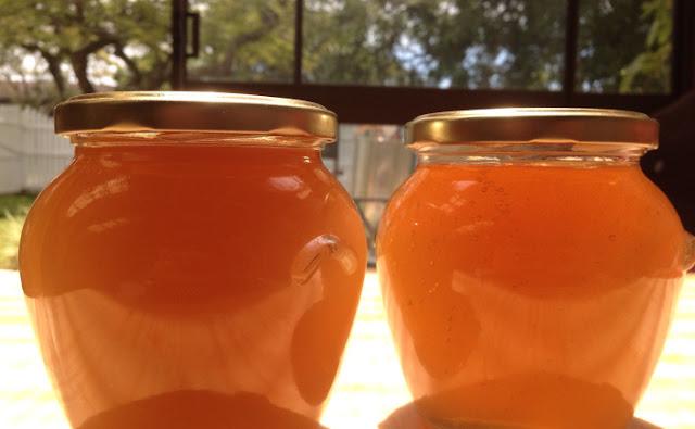 Πωλείται ξανθοκόκκινο μέλι έλατο-ανθέων στην Άρτα