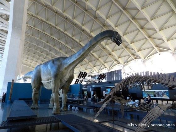 exposición de dinosaurios, Ciudad de las artes y las ciencias de Valencia