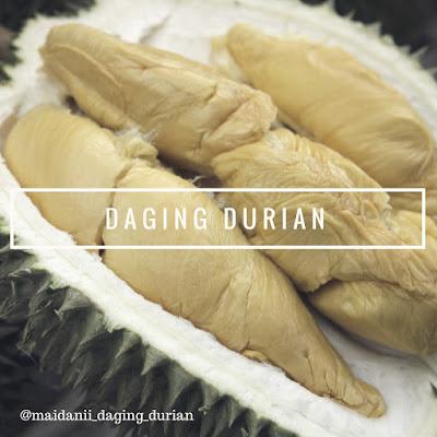 produsen-daging-durian-medan-yang-tiada_23