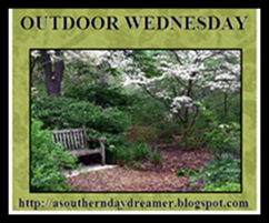 Outdoor Wed w/Susan