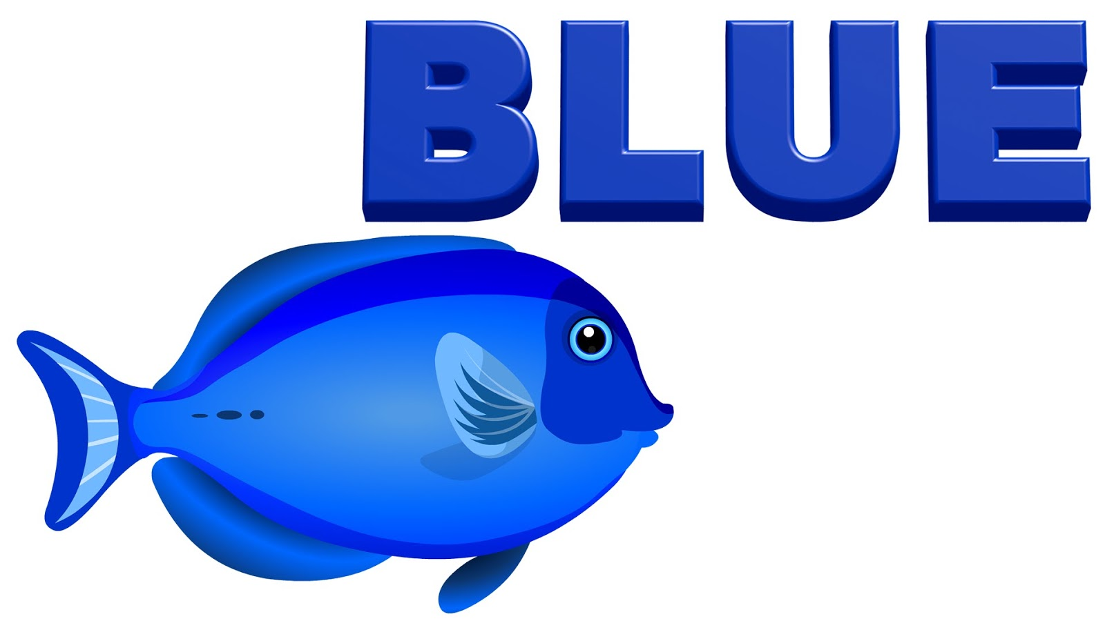 Importance Of Blue Color