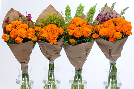 From Left To Right Marigolds With Gomphrena Soli Bells Of Ireland And Snapdragons