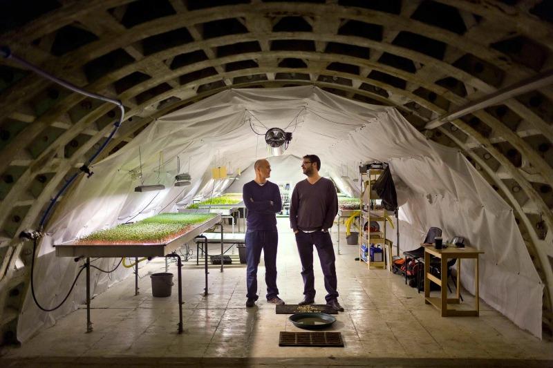 Huerto subterráneo en un refugio de la Segunda Guerra Mundial