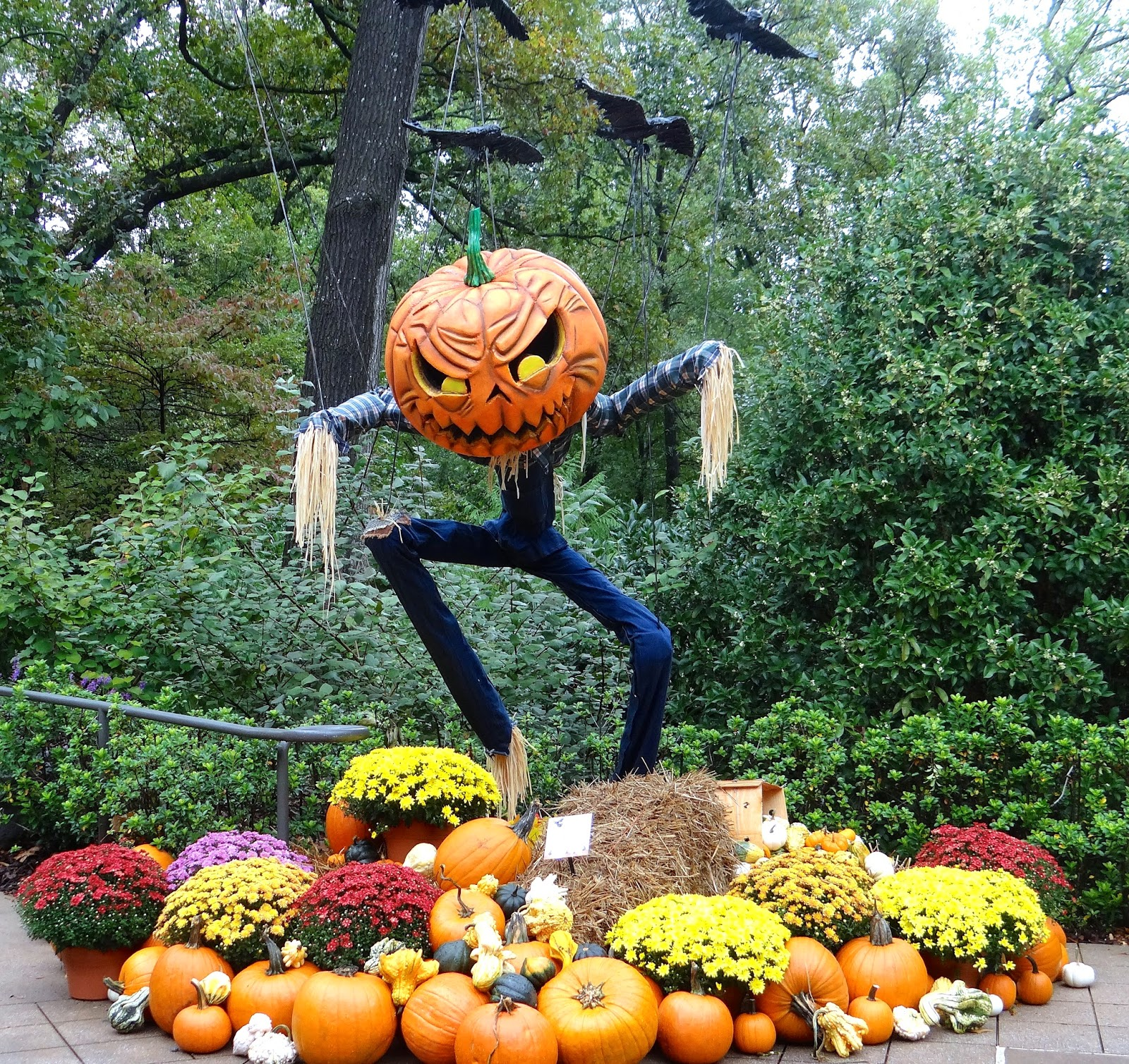 Halloween Scarecrows in the Garden | Phillip's Natural ...