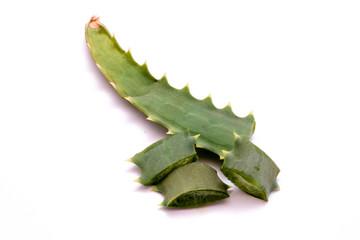 लोवेरा के फायदे और उपयोग हिंदी Benefits and Use of Aloe Vera Hindi