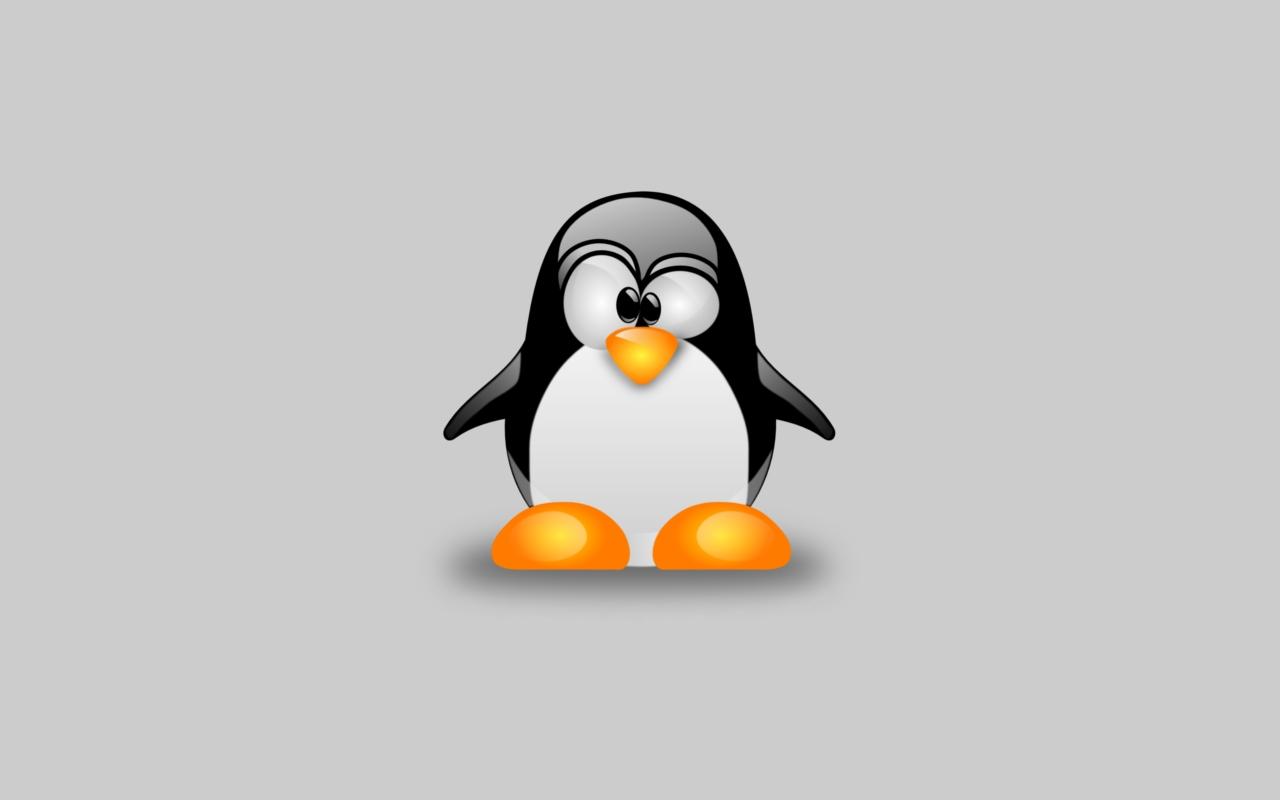 كۆرسی فێربونی لینوكس فیدۆرا 20وانهی فێركاری Fedora Linux