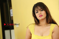 Cute Telugu Actress Shunaya Solanki High Definition Spicy Pos in Yellow Top and Skirt  0575.JPG