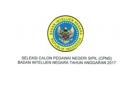 Rekrutmen Lowongan kerja CPNS Badan Intelijen Negara  Lowongan CPNS Badan Intelijen Negara [199 Formasi]