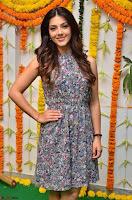 Actress Mehreen Kaur Latest 2017 Po Stills10 ~  Exclusive Celebrities Galleries.jpg