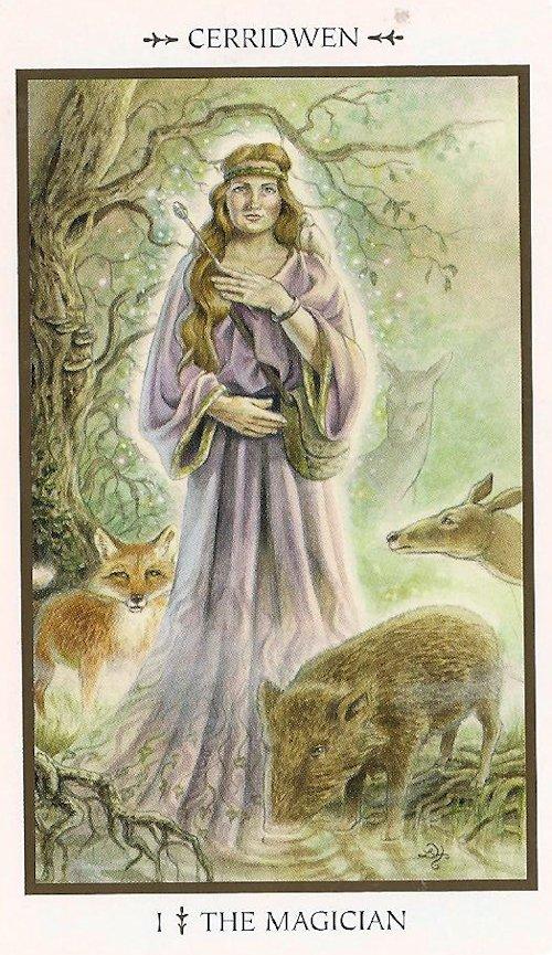 Animal Tarot Cards: Tarot Notes: Animal Tarot Time: The Magician