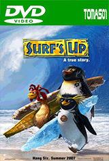 Surf's Up (Los reyes de las olas) (2007) DVDRip