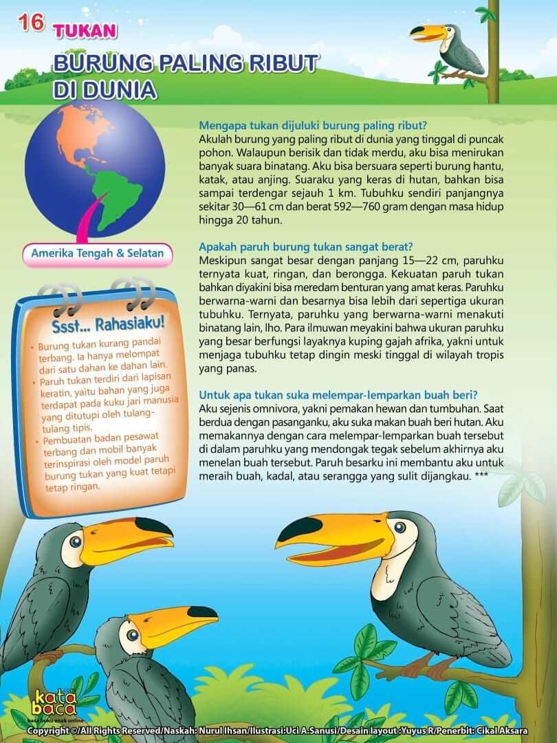 Burung Tukan - Burung Paling Ribut di Dunia