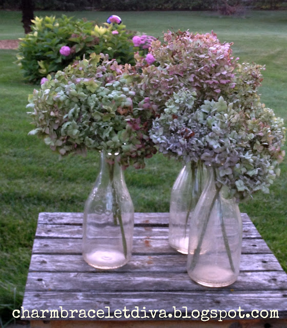 Dried hydrangeas vintage milk bottles