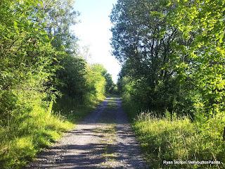 Photograblog Lymphoma Road