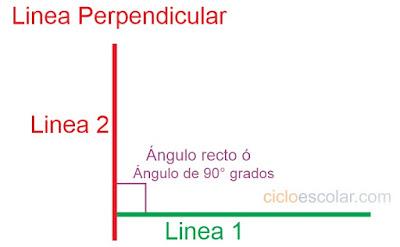 Todo depende de la base desafío 27 contestado quinto grado Lineas perpendiculares