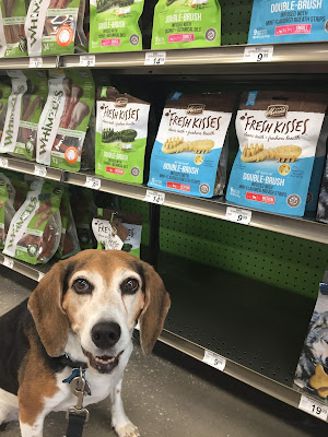 Use Merrick Fresh Kisses Dental Treats to keep your dog's teeth pearly!