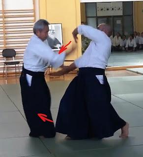 shihonage yokomenuchi