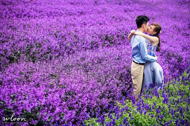 gorgeous lavender wedding