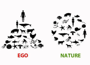 Ego y Nature
