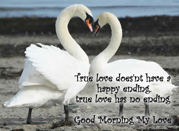 40 Beautiful Good Morning Love Quotes For Her