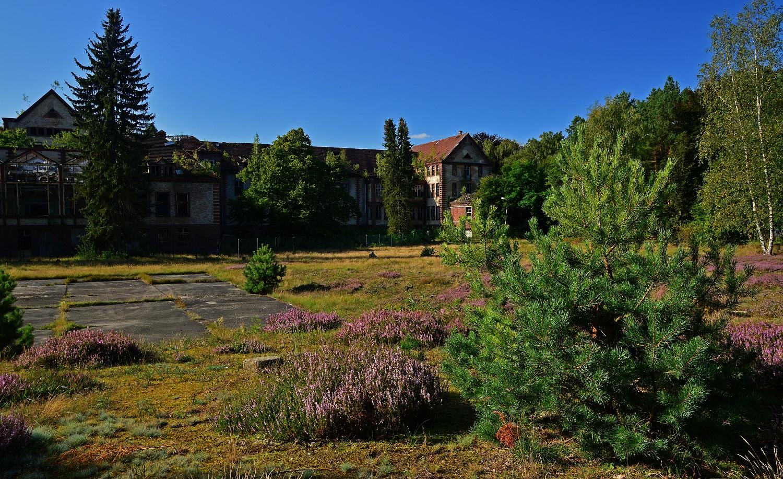 Beelitz-Heilstätten Alpenhaus