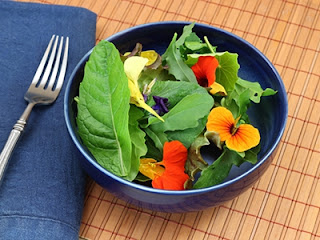 Primavera para comer - Aproveite a primavera e experimente comer flores