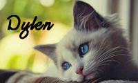 http://ejjeli-lepke.blogspot.hu/
