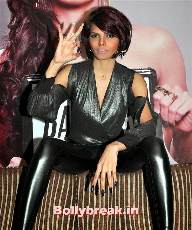 Sherlyn Chopra Bad Girl Album Launch Hot Pics - 12 Pics-6718
