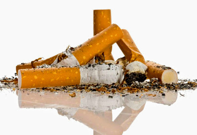 Cigarettes and cigarette butts can be toxic to dogs.