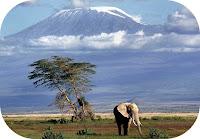 Cerca Viaggi per Kenya