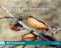 cultivo-del-almendro