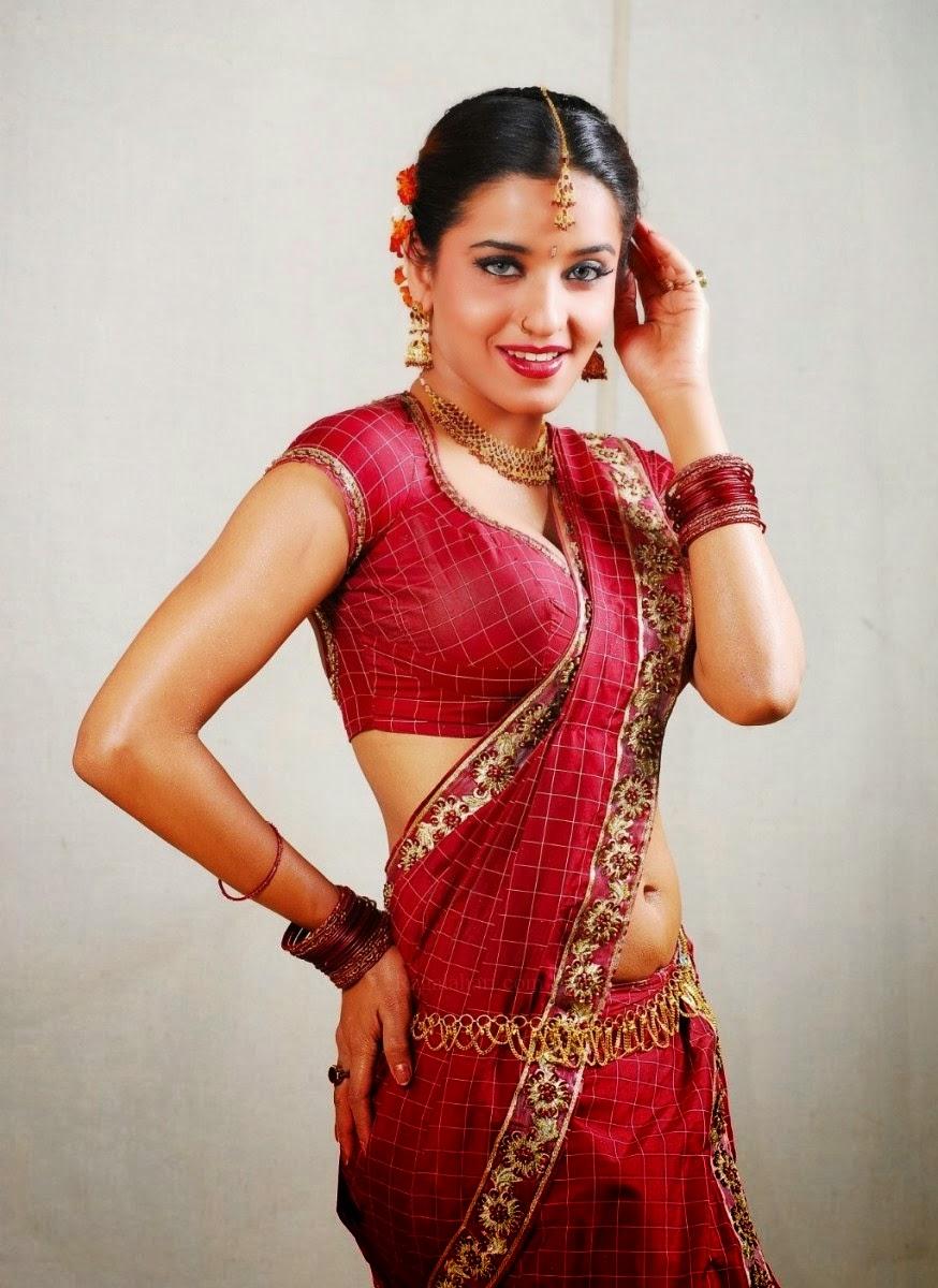 Monalisa Hot In Saree Pics-8867