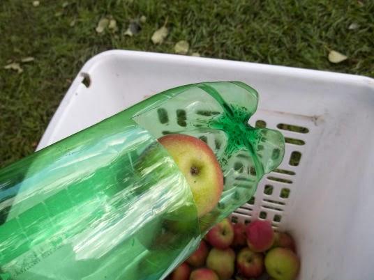 Homemade Fruit Picker 27