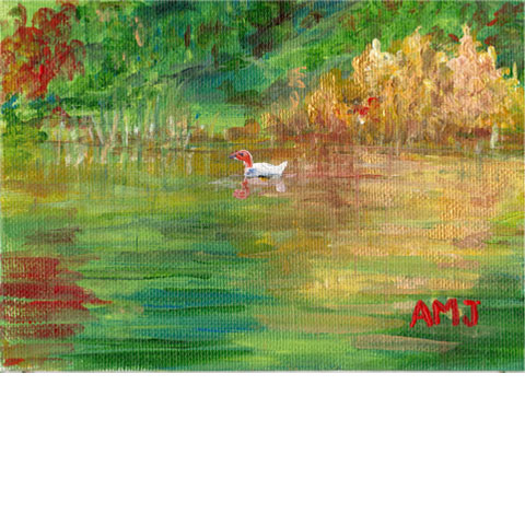 "Swimming in colour - 5""x7"" Art card"