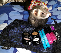 cute brown baby ferret playing with makeup stash NYX cosmetics