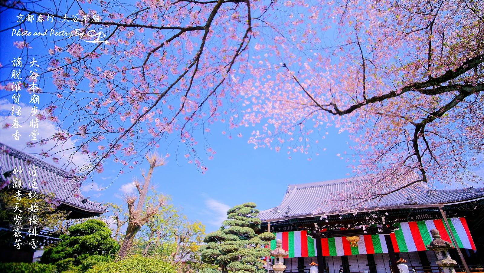 大谷本廟とは - goo Wikipedia (ウィキペディア)