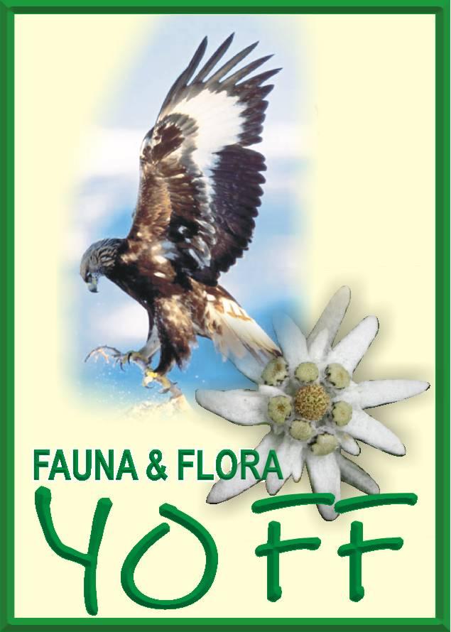 Click pe sigla pentru a accesa harta Europa Natura 2000