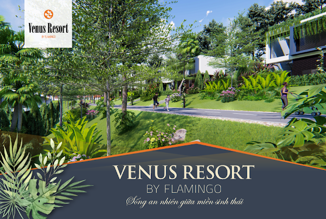 flamingo venus resort