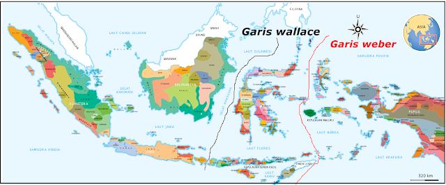 Geo Renza Persebaran Flora Dan Fauna Di Indonesia