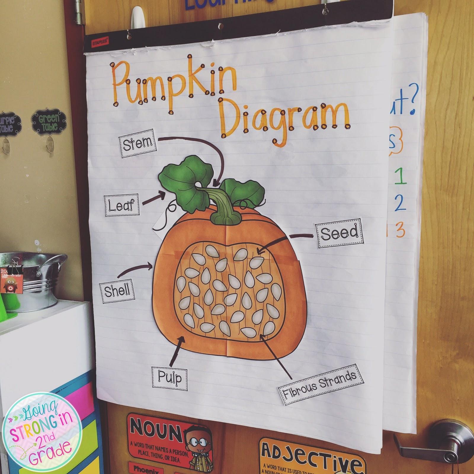 going strong in 2nd grade pumpkin week. Black Bedroom Furniture Sets. Home Design Ideas